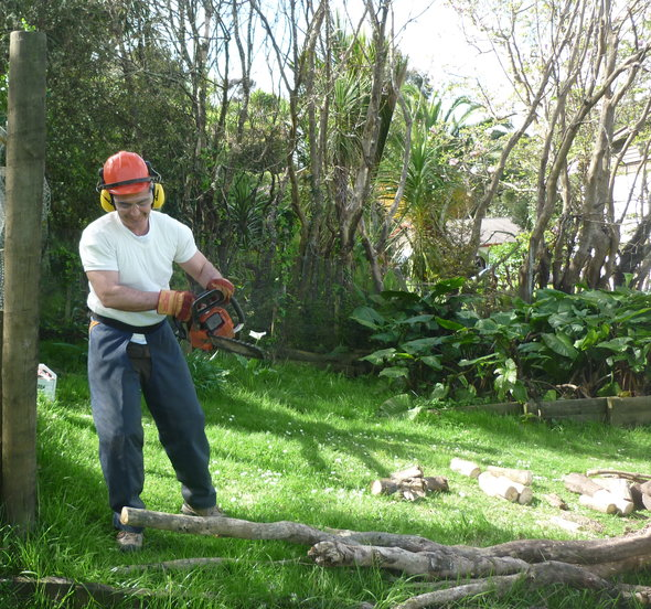 Chainsawing-at-Muriwai