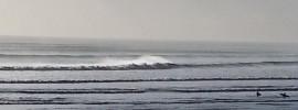 Surfs up at Muriwai Beach