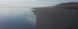 Muriwai Beach looking North