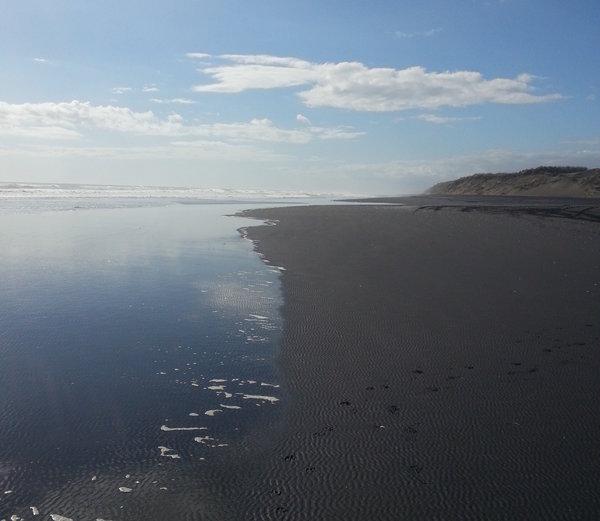 Muriwai-Beach-Auckland
