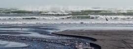 Okiroto Stream west coast Muriwai