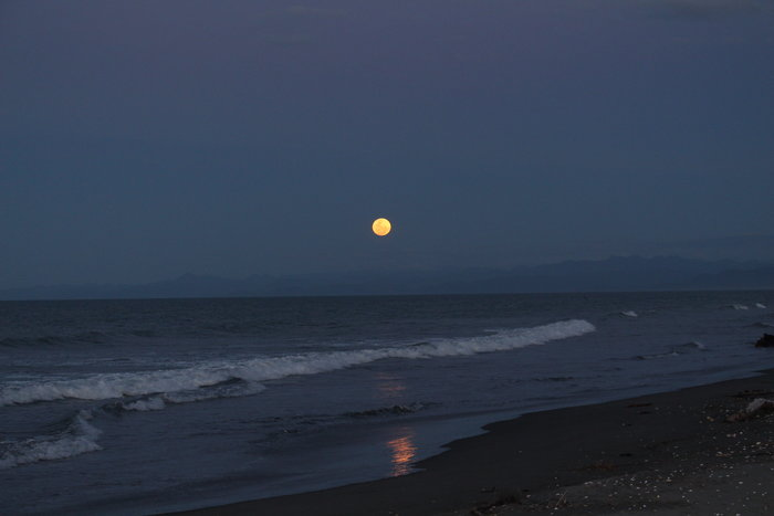 Bay of Plenty full moon photo